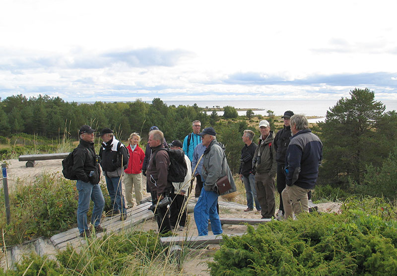 Svenska naturreservat hett för semestern enligt färsk sökdata