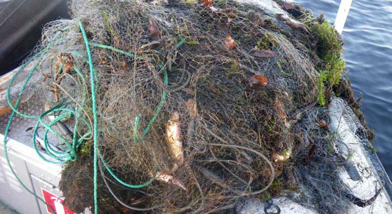 Stort beslag av olagliga nät i Kalix skärgård