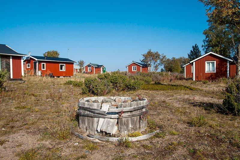 Nästan 2,8 miljoner besökte Sveriges nationalparker 2019