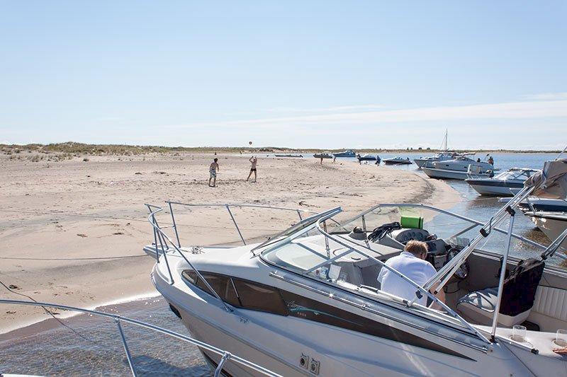 Landstigningsförbudet hävs på Skvalpen / Sandgrönnorna i helgen