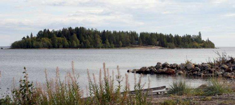 Renöra i Piteå skärgård